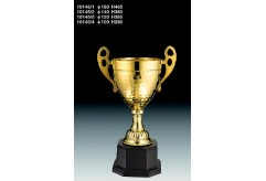 獎盃 TM-10145